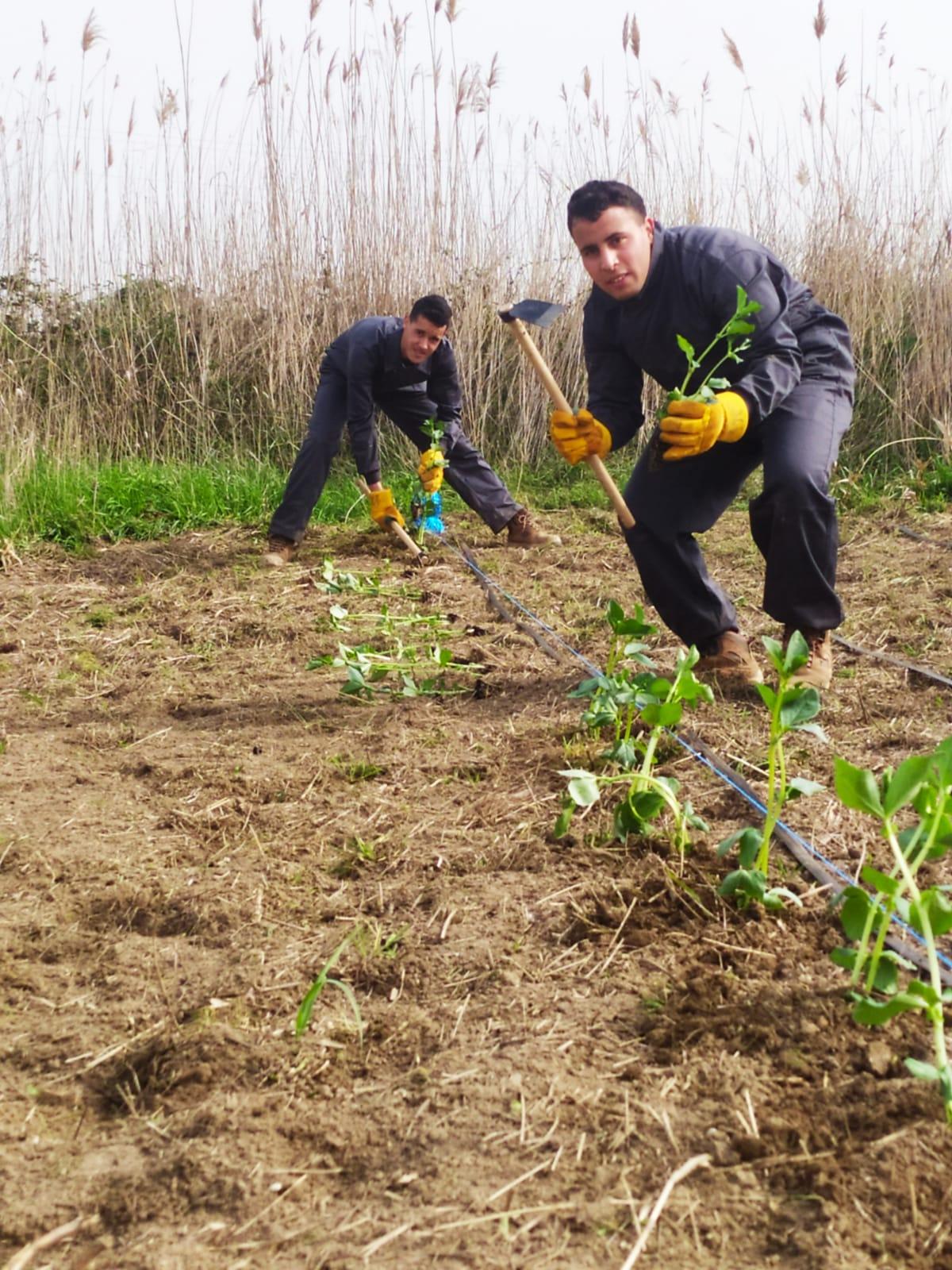 Nois treballant al hort